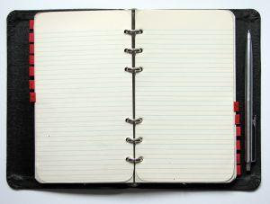 509847_diary