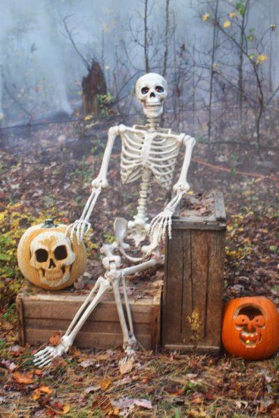 Pumpkins Aglow at Edaville U.S.A. ~ $4 off kids admission deal