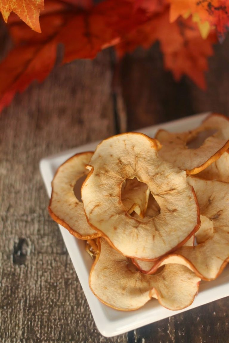 Easy and Delicious Oven Dried Apple Rings Recipe