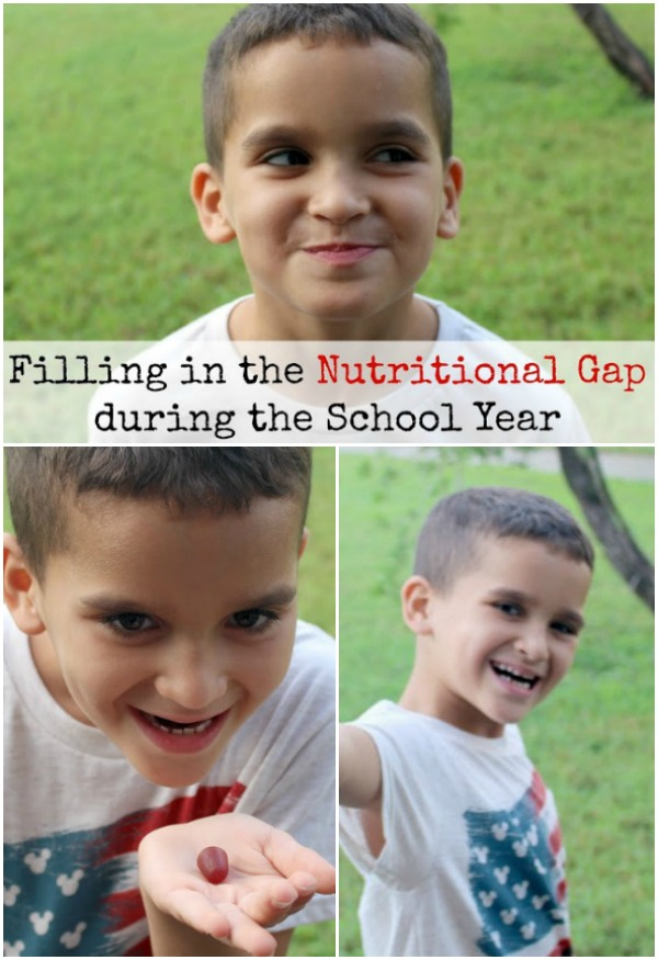 Filling-the-nutritional-gap