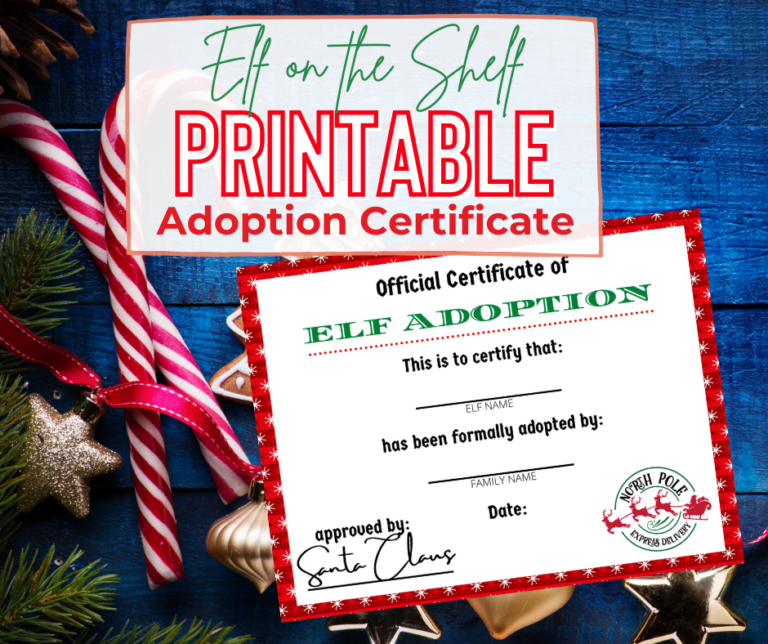 24 Fun and Easy Elf on the Shelf Ideas with Printable Adoption Certificate