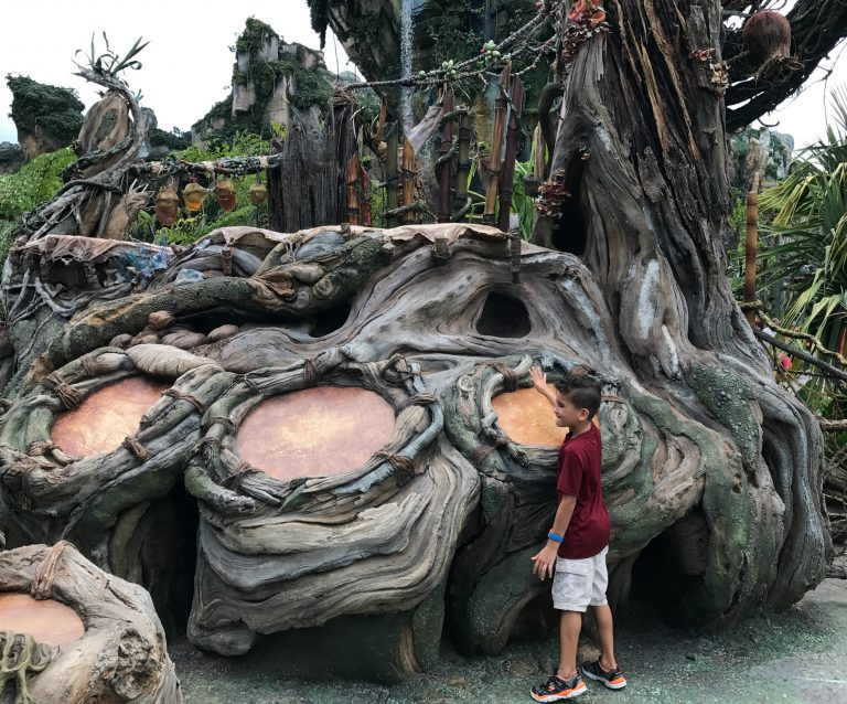 A Complete Guide to Visiting Disney's Pandora – The World of Avatar!