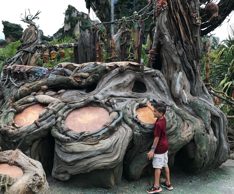 Visiting Disney's Pandora Tree Drums Guide