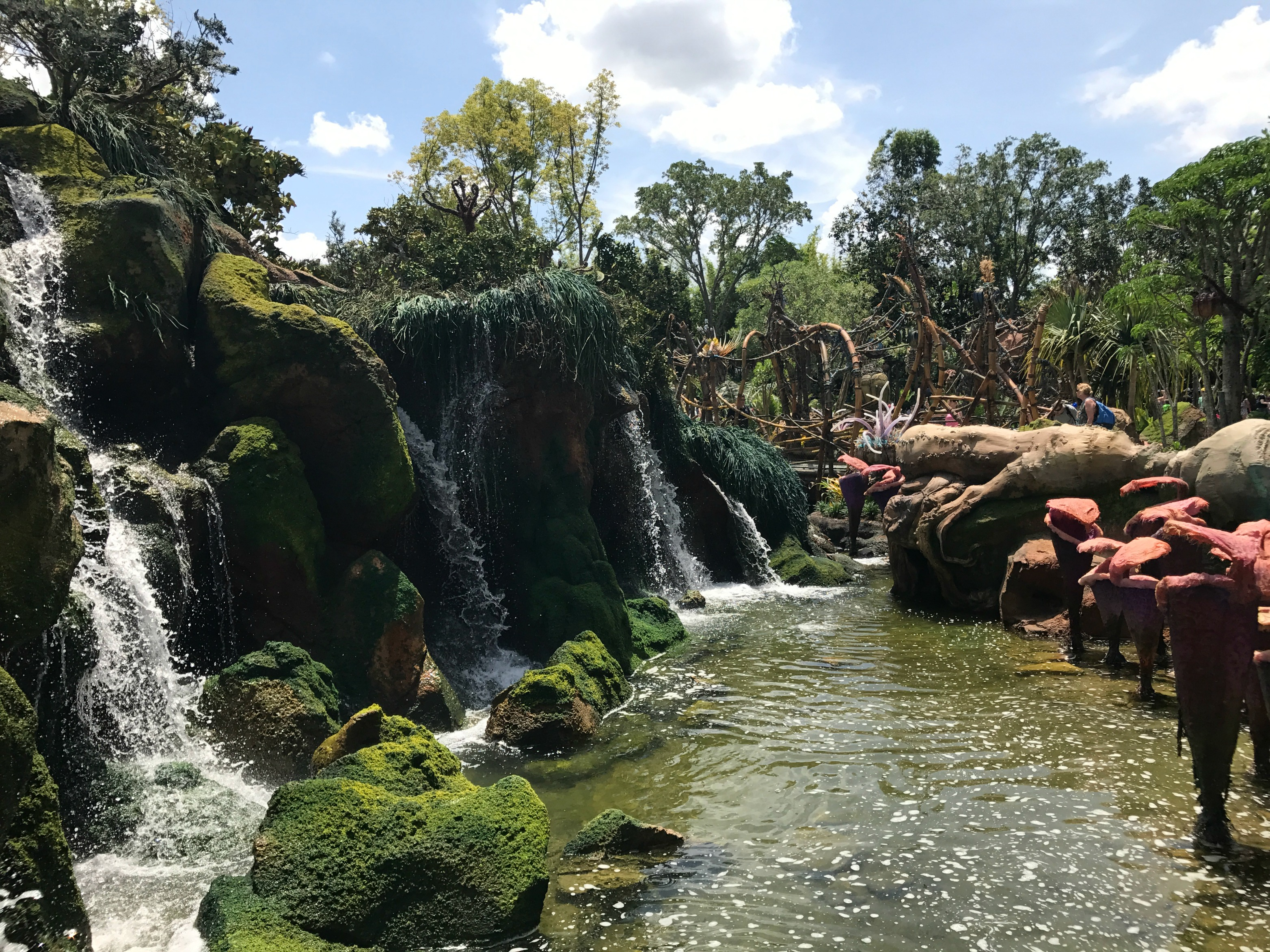 Tips Visiting Disney's Pandora River