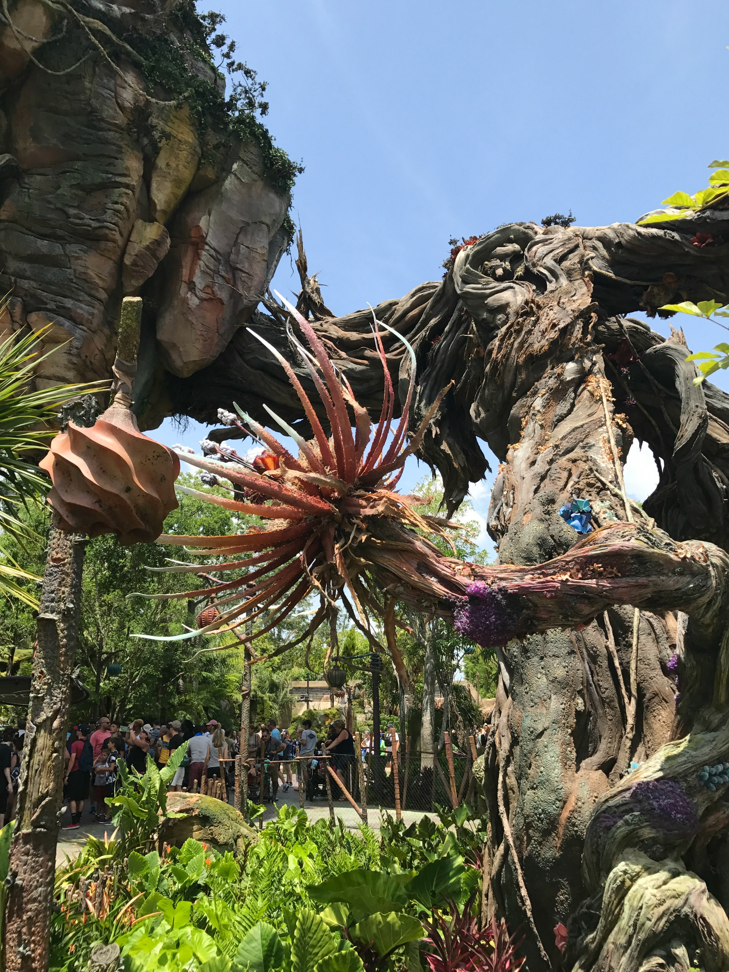 Visiting Disney's Pandora Flowers