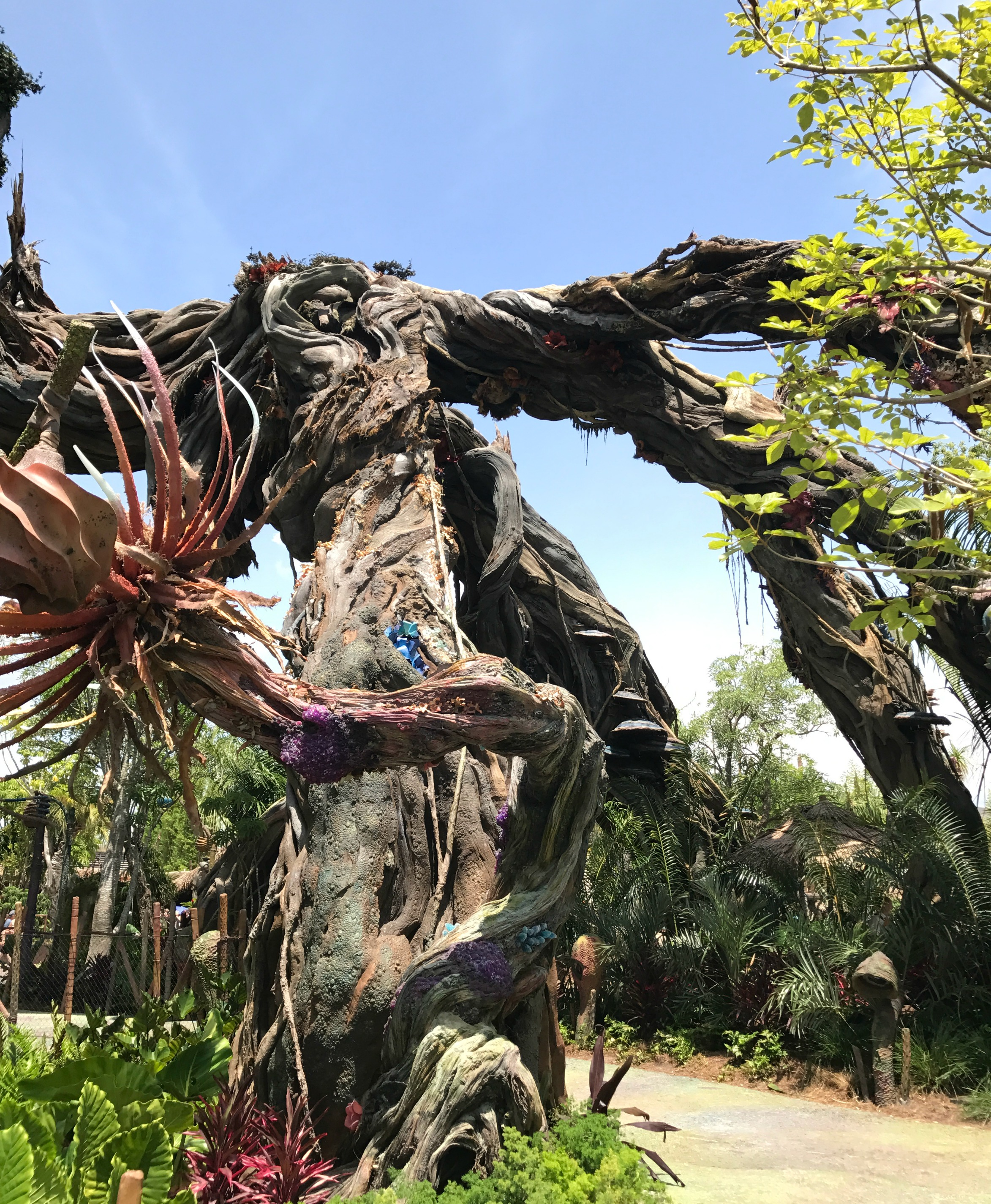 Visiting Disney's Pandora Tips Trees