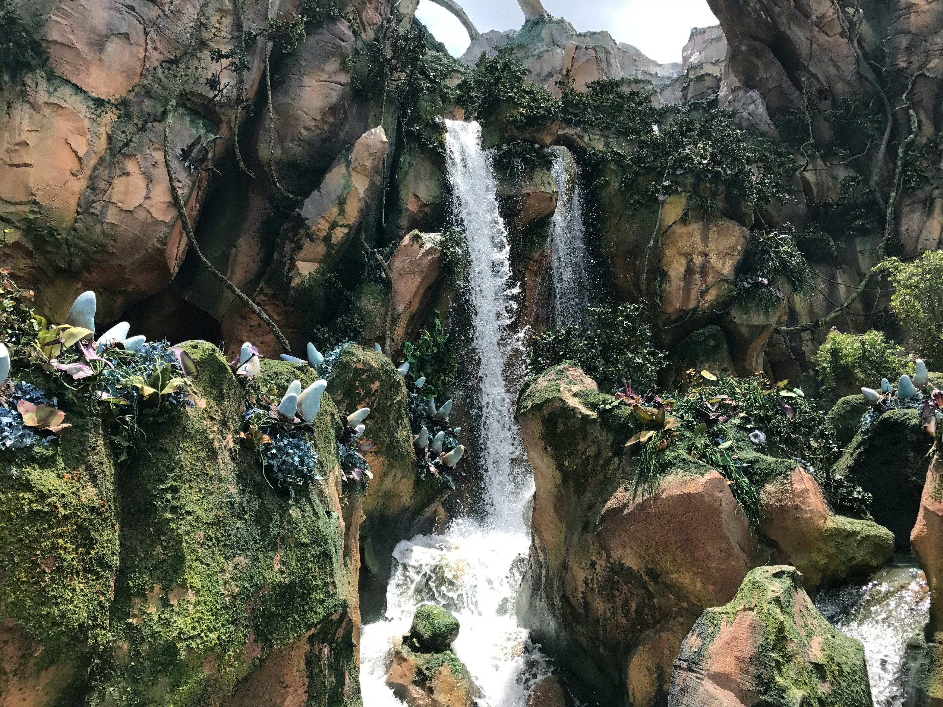Tips and Guide Visiting Disney's Pandora Avatar