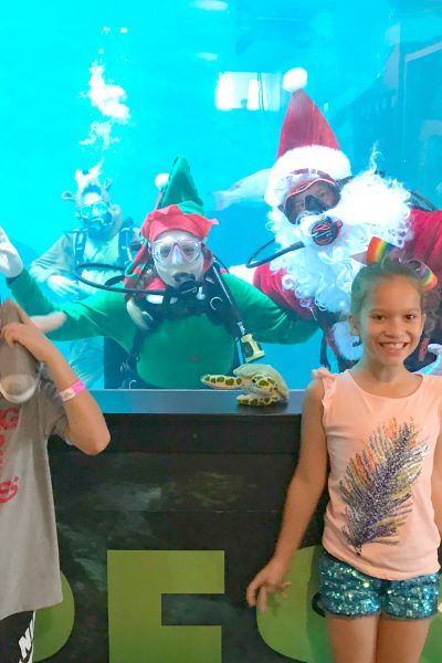 Winter's Wonderland & Sea of Lights with Coca-Cola Florida and the Clearwater Marine Aquarium!