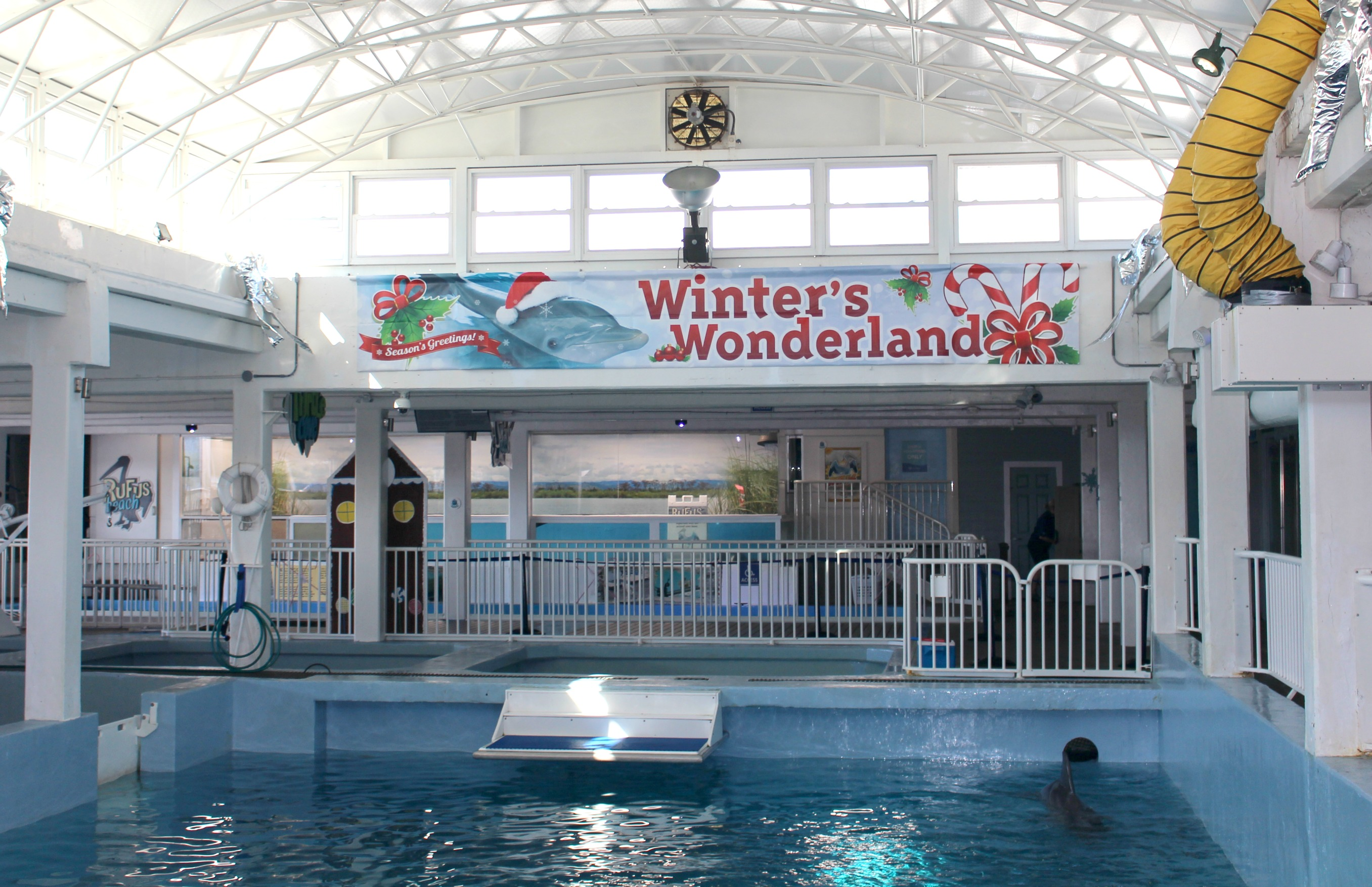 Winter's Wonderland and Sea of Lights Clearwater Marine Aquarium