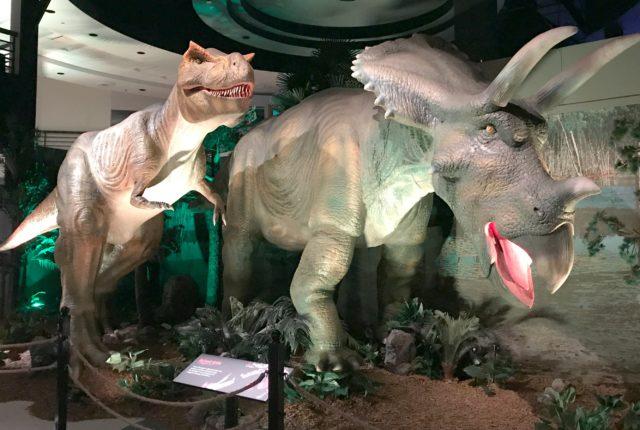 Extreme-Dinosaurs-International-Drive-Orlando