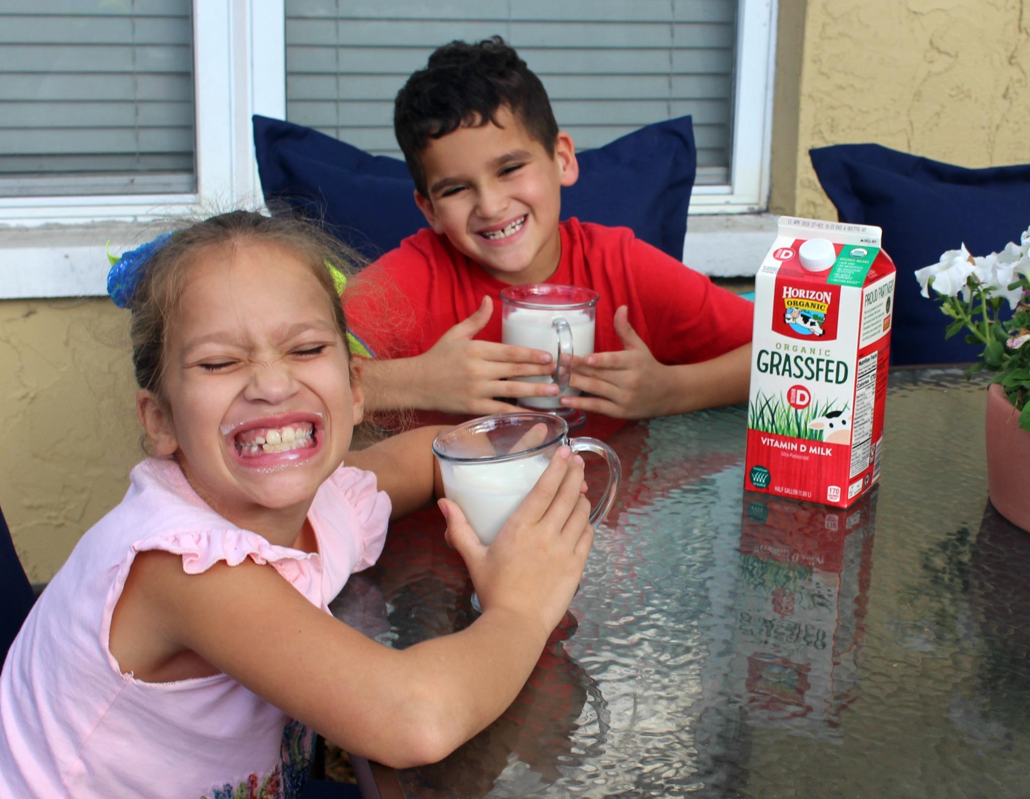 Organic-grassfed-horizon-milk-walmart-best-milk, stress-free-kids