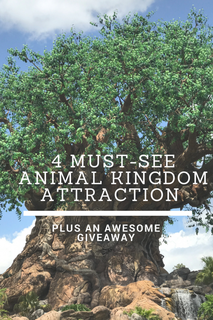 Animal Kingdom Attractions Must-See