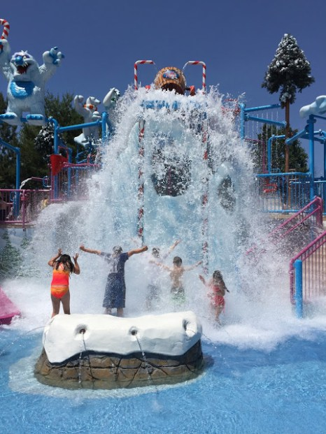 Top water parks in florida