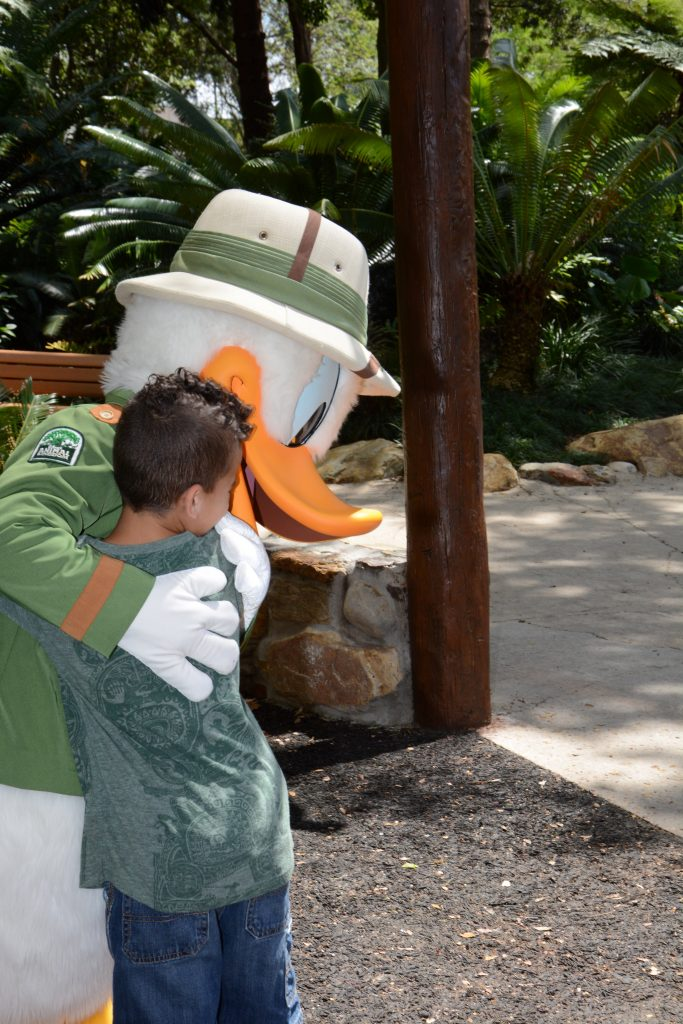 Animal Kingdom Attractions characters Donald Duck Hugs