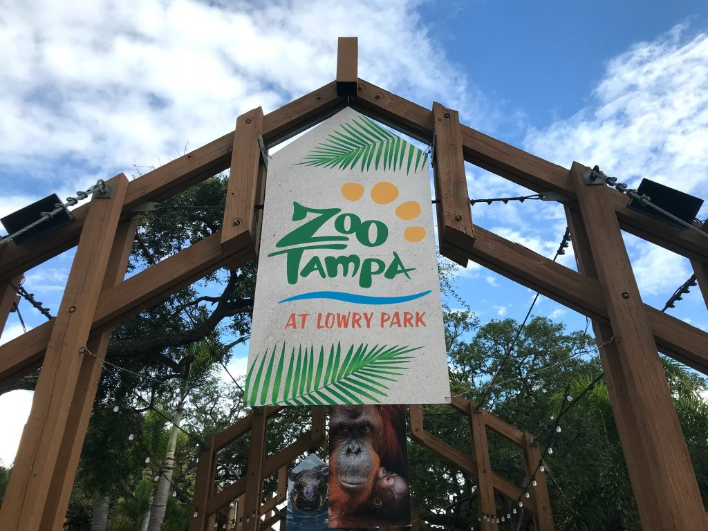 Zoo Tampa Guide
