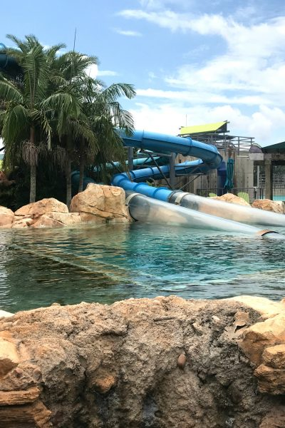 Top 8 Water Parks in Florida