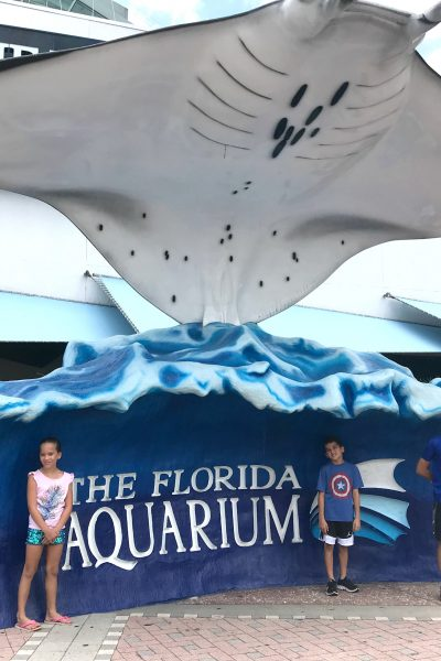 the florida aquarium family tampa