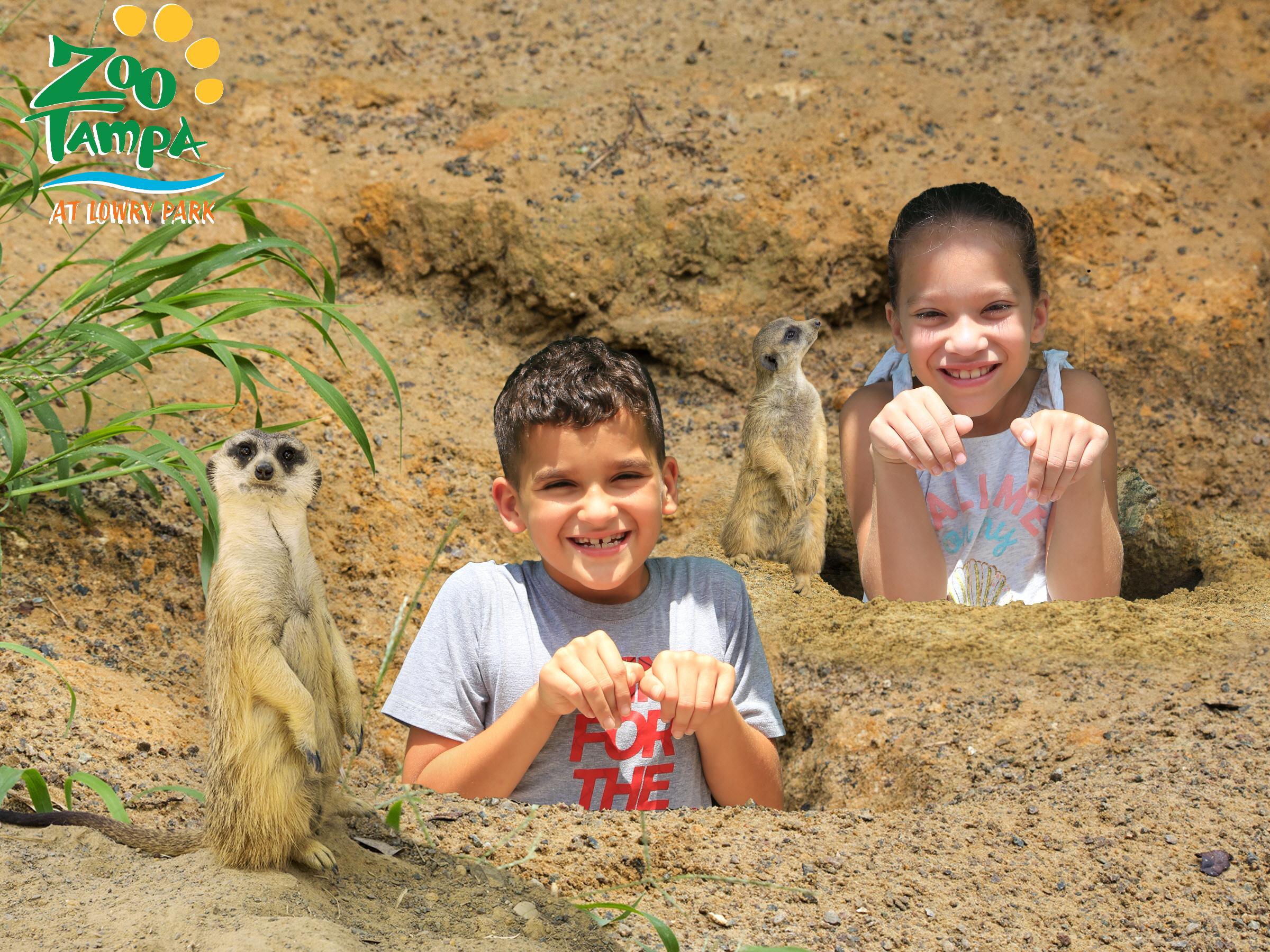 Zoo tampa Member