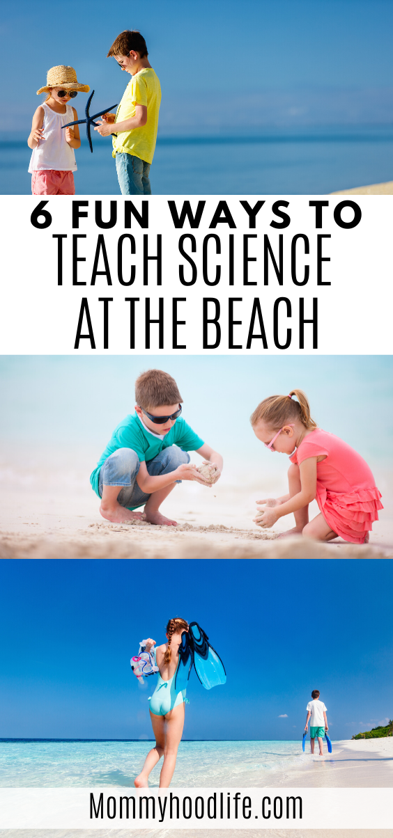 Teach Science at the Beach