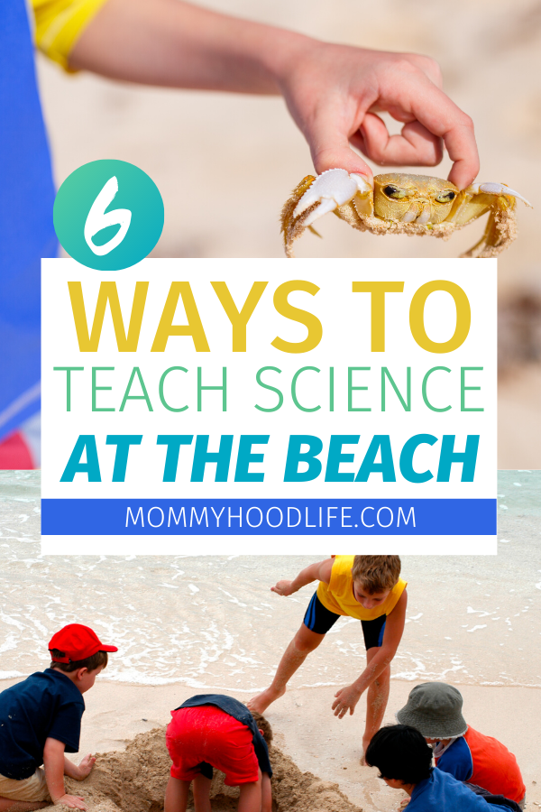 ways to teach science at the beach