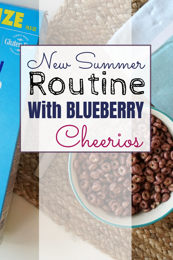 Breakfast Ideas Blueberry Cheerios