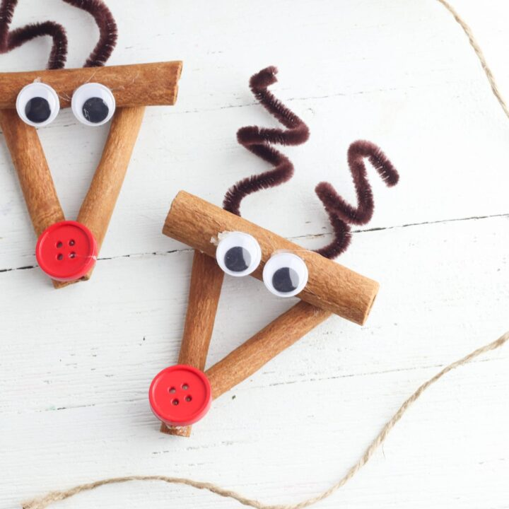 Rudolph Ornament Craft